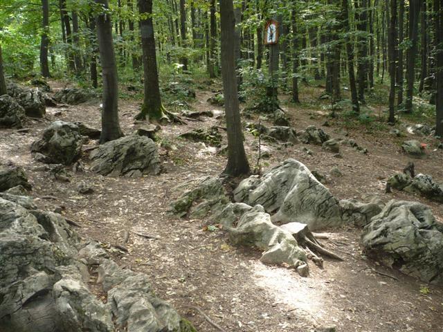 Boldogasszony köve – A gyógyító energia