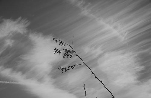 Hátborzongató hangok az égből