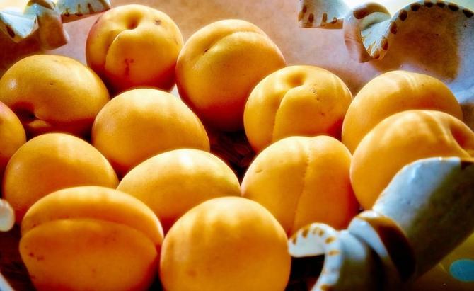 Az aranysárga sárgabarack előnyei