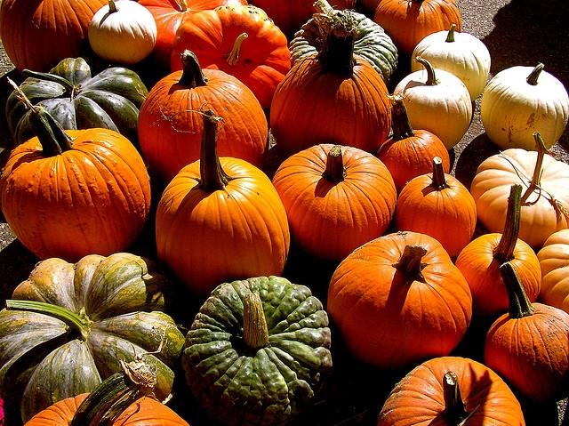 Egészséges és finom őszi csemege – Sütőtök