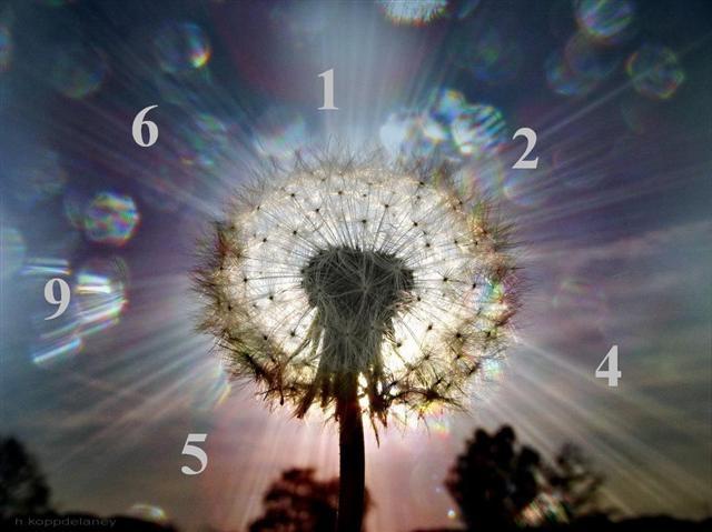 A sorsmisszió számokról részletesebben – 7,8,9